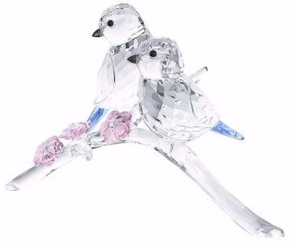 Swarovski figurer. Blue Tits Bird Couple - 5004727