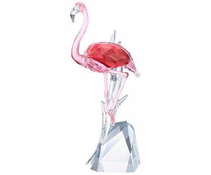 Swarovski figurer. Flamingo - 5302529