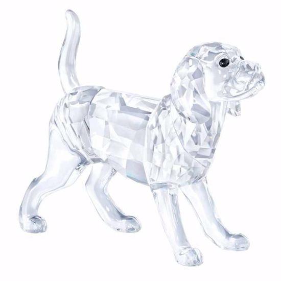 Swarovski figurer. Beagle - 5135917
