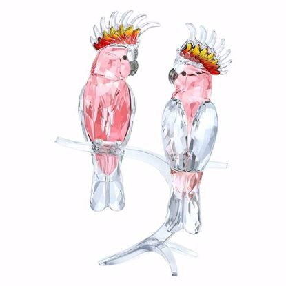 Swarovski figurer. Pink Cockatoos - 5244651