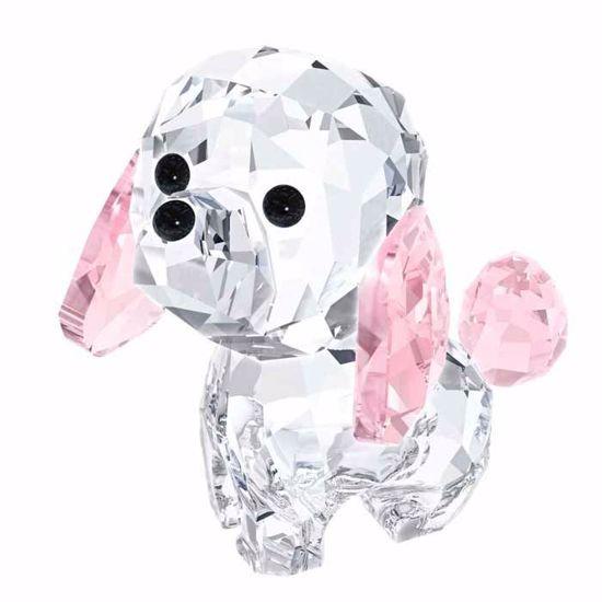 Swarovski figurer. Puppy - Rosie The Poodle - 5063331