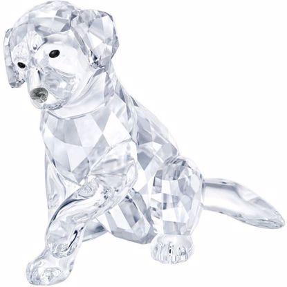 Swarovski figurer. Labrador Mother - 5399004