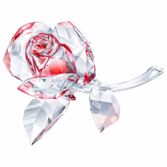 Swarovski figurer. Blossoming Rose, Red - 5428561