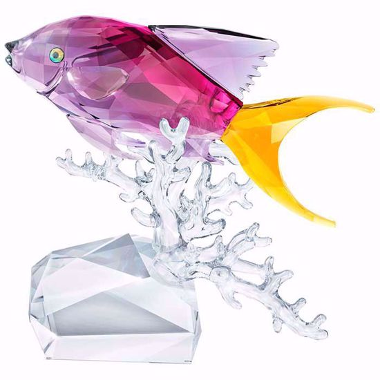 Swarovski figurer Anthias Fish - 5428651