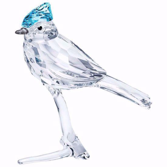 Swarovski figurer Blue Jay - 5470647