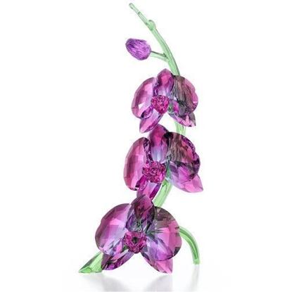 Swarovski figurer. Orchids