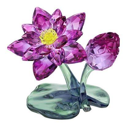 Swarovski figurer. Lotus - 5275716