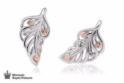 Sølv øredobber Debutante Feather Stud - 3SDBFE